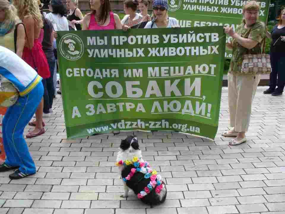 protest2ukraine9.6.12.jpg