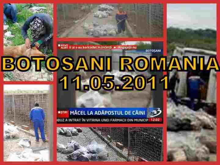rumaenien11.05.2011.jpg