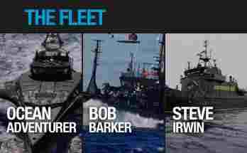 thefleet20102011.jpg