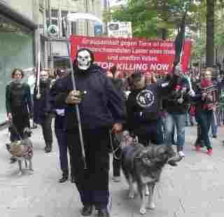 trauermarschfuerermordeteukrainischestrassenhundeinhamburgam9.6.12.jpg